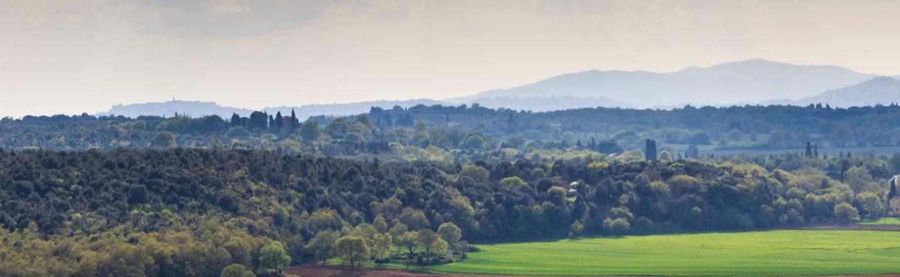 Photo of Tuscany
